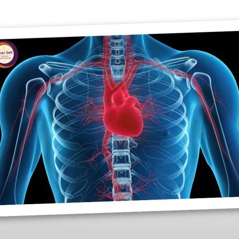 Coerência Cardíaca